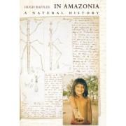 In Amazonia by Hugh Raffles