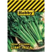 Giant Pascal hobby