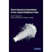 Direct Numerical Simulations of Gas-Liquid Multiphase Flows by Gretar Tryggvason
