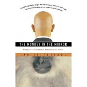 The Monkey in the Mirror by Ian Tattersall