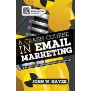 A Crash Course in Email Marketing for Small and Medium-sized Businesses by John W. Hayes