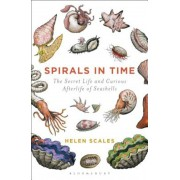 Spirals in Time: The Secret Life and Curious Afterlife of Seashells, Paperback