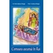 Comoara Ascunsa In Rai. Povestire Pentru Copii - Adrian Chiaga Cristina Chiaga