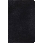 ESV Thinline Bible by Crossway Bibles