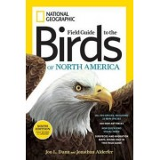 National Geographic Field Guide to the Birds of North America 6th Edition by Jonathan K. Alderfer
