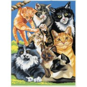 Reeves - Junior Painting By Numbers Cats Montage