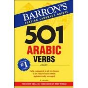 501 Arabic Verbs by Raymond P. Scheindlin
