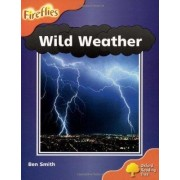 Oxford Reading Tree: Level 6: Wild Weather by Ben Smith