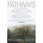Pathways from the Culture of Addiction to the Culture of Recovery: A Travel Guide for Addiction Professionals