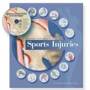 Anatomical Visual Guide to Sports Injuries by Anatomical Chart Company