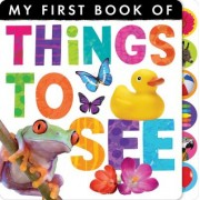 My First Book of Things to See by Little Tiger Press