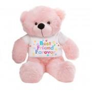 Pink 2 feet Big Teddy Bear wearing a Best Friend Forever T-shirt