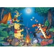 Clementoni Puzzle 25435 - Winnie the Pooh: The Bonfire - Floor 40 pezzi