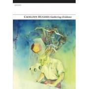 Gathering Evidence by Caoilinn Hughes