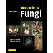 Introduction to Fungi by Revd Prof. John Webster