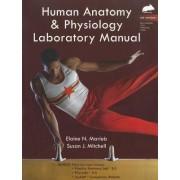Human Anatomy & Physiology Laboratory Manual, Rat Version by Elaine N. Marieb