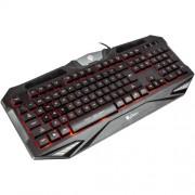 Tastatura Natec Genesis RX39 USB