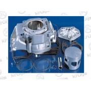 Cilinderkit Aprilia RS125 Rotax 123 Engine