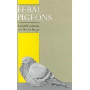 Feral Pigeons by Richard F. Johnston