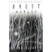 Ghost Worlds by Mel Gooding