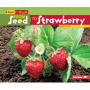 From Seed to Strawberry