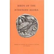 Birds of the Athenian Agora by Robert D. Lamberton