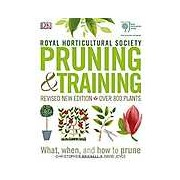 RHS Pruning & Training: What When and How to Prune