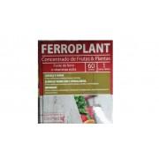 Ferroplant 60 Comprimidos