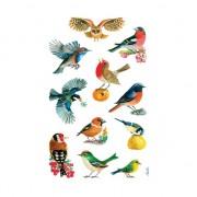 3 vellen met vogel stickers