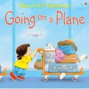 Usborne First Experiences Going On A Plane by Anna Civardi