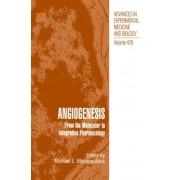 Angiogenesis by Michael E. Maragoudakis
