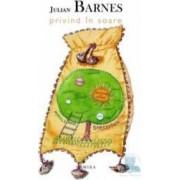 Privind in soare - Julian Barnes