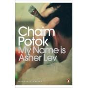 My Name is Asher Lev(Chaim Potok)