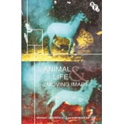 Animal Life and the Moving Image by Michael Lawrence