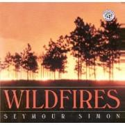 Wildfires by Seymour Simon
