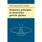 Symmetry Principles Particle Physics by W. M. Gibson