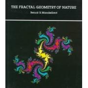 The Fractal Geometry of Nature by Benoit B. Mandelbrot