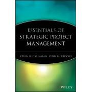 Essentials of Strategic Project Management