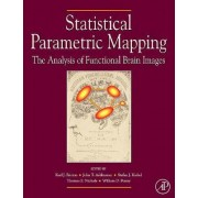 Statistical Parametric Mapping by Karl J. Friston