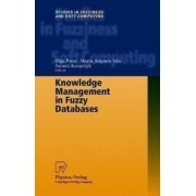 Knowledge Management In Fuzzy Databases