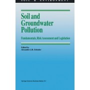 Soil and Groundwater Pollution by Alexander J.B. Zehnder