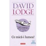 Ce mica-i lumea Ed.2011 - David Lodge