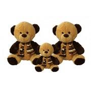 Set Of 3 Soft Teddy Bears Papa Bear Mama Bear And Cub Bear,