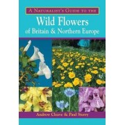 A Naturalist's Guide to the Wild Flowers of Britain and Northern Europe by Andrew Cleave