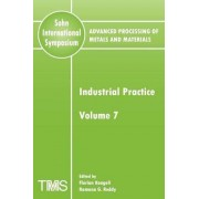 Advanced Processing of Metals and Materials (Sohn International Symposium): Industrial Practice Volume 7 by Florian Kongoli