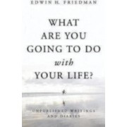 What Are You Going to Do with Your Life? by Edwin H. Friedman