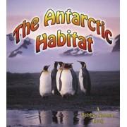An Antarctic Habitat by Molly Aloian