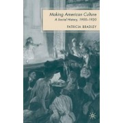 Making American Culture by Patricia Bradley