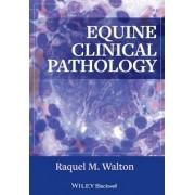 Equine Clinical Pathology by Raquel M. Walton