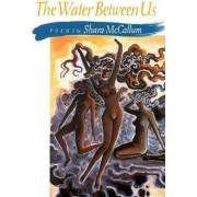 The Water Between Us by Shara McCallum
